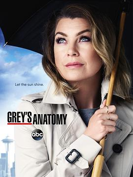 实习医生格蕾 第十二季