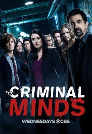 犯罪心理 第十三季