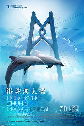 港珠澳大桥高清BT下载
