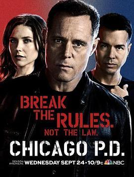 芝加哥警署 第二季