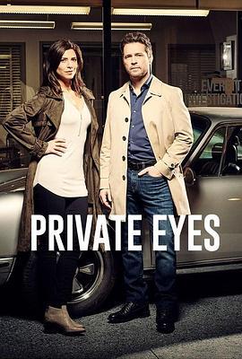 私家侦探 第三季高清BT下载
