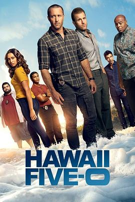 夏威夷特勤组 第十季